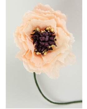 STUDIO ABOUT - Paper Flower Peony - Nude