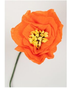 STUDIO ABOUT - Paper Flower Poppy - Red