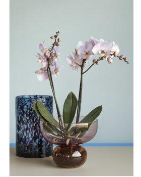HÜBSCH  - Vase glas H28cm